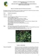 Cover Report of a Pest Risk Analysis for Parthenium Hysterophorus